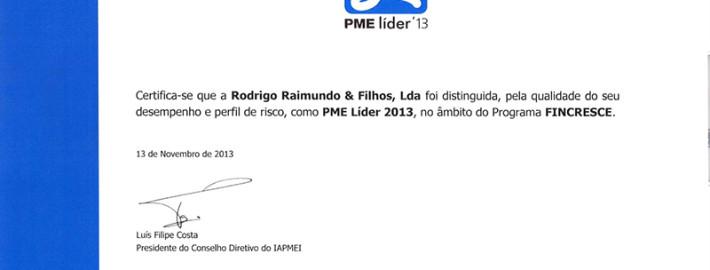 pme-lider-2013